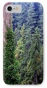 Capilano Canyon Ivy IPhone Case by Will Borden