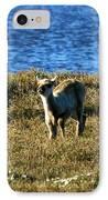 Caribou Fawn IPhone Case