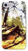 Carpet Of Autumn Leaves IPhone Case by Patrick J Murphy