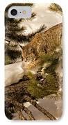 Cat Walk IPhone Case by Priscilla Burgers