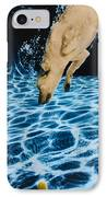 Chase 2 IPhone Case by Jill Reger