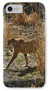 Cheetah  In The Brush IPhone Case by Douglas Barnett