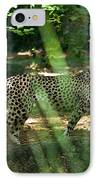 Cheetah On The In The Forest IPhone Case by Douglas Barnett