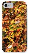 Colors Of Autumn IPhone Case by John Rizzuto