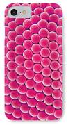 Compound Eye Of A Mosquito, Sem IPhone Case