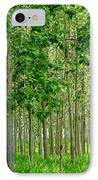 Cottonwood Grove IPhone Case by Will Borden