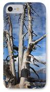 Crater Lake Tree IPhone Case