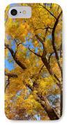 Crisp Autumn Day IPhone Case