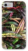 Croton 1 IPhone Case by Eikoni Images