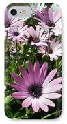 Daisy Patch IPhone Case
