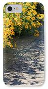 Dappled Light II IPhone Case by Suzanne Gaff