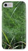 Dew On The Ferns IPhone Case