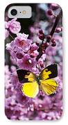 Dogface Butterfly In Plum Tree IPhone Case