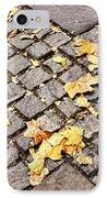 Fall Crossroads IPhone Case by JAMART Photography