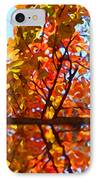 Fall Reflextion IPhone Case