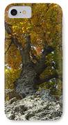Falling Tree IPhone Case