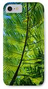 Fern Detail IPhone Case by Himani - Printscapes