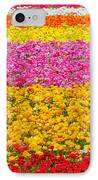 Flower Fields Carlsbad Ca Giant Ranunculus IPhone Case by Christine Till