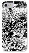 Flower Nectar IPhone Case by Eikoni Images