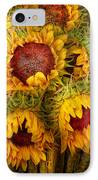 Flowers - Sunflowers - You're My Only Sunshine IPhone Case