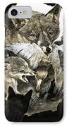 Fox Delivering Food To Its Cubs  IPhone Case by English School