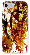 Gazing Into The Autumn Trees IPhone Case by Patrick J Murphy