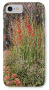 Gladioli IPhone Case by Claude Monet