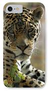 Gorgeous Jaguar IPhone Case by Sabrina L Ryan