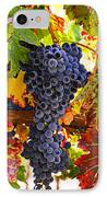 Grapes On Vine In Vineyards IPhone Case by Garry Gay