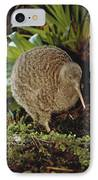 Great Spotted Kiwi Apteryx Haastii Male IPhone Case by Tui De Roy