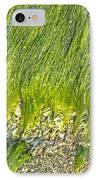 Green Algae On Rock IPhone Case