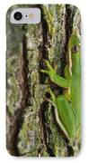 Green Tree Frog Thinking IPhone Case by Douglas Barnett