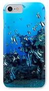 Hawaiian Reef Scene IPhone Case by Dave Fleetham - Printscapes