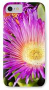 Ice Plant Blossom IPhone Case by Kelley King