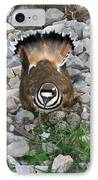 Kildeer And Nest IPhone Case