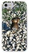 Killdeer 2 IPhone Case