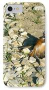 Killdeer Broken Wing Act IPhone Case by Douglas Barnett