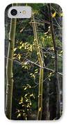 Late Aspen IPhone Case