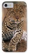 Leopard Panthera Pardus, Masai Mara IPhone Case by Anup Shah