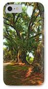 Live Oak Lane IPhone Case by Steve Harrington