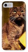Looking At The Sun IPhone Case by Loriental Photography