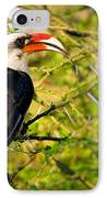 Male Von Der Decken's Hornbill IPhone Case
