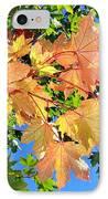 Maple Mania 1 IPhone Case