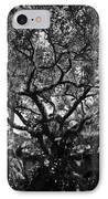 Monastery Tree IPhone Case