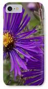 My Purple Ways IPhone Case