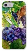 Napa Harvest IPhone Case