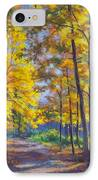 Nature Trail Turn Of Autumn IPhone Case by Fiona Craig