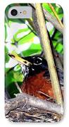 Nesting Robin IPhone Case