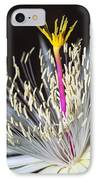 Night Time Celebration IPhone Case by Kelley King
