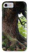 Old Tree In Kyoto IPhone Case by Carol Groenen